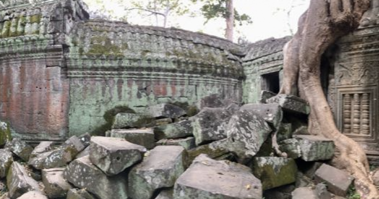 Ta Prohm and the jungle takeover